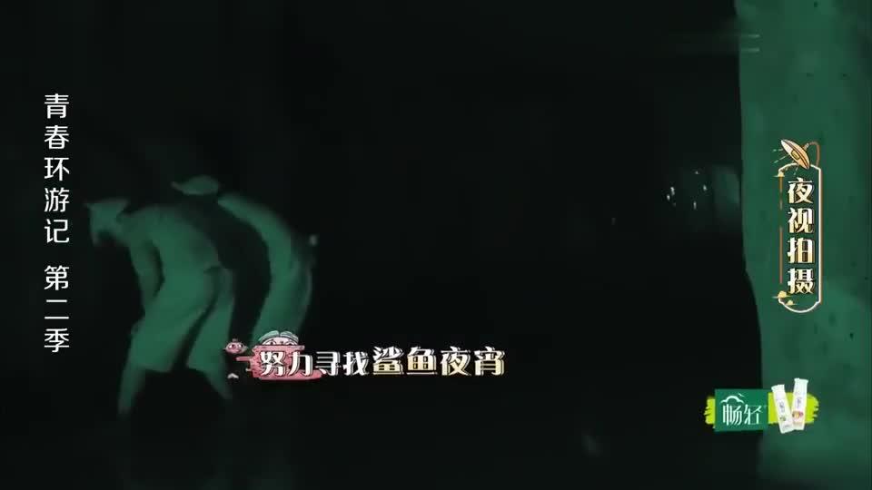 环游记:周深夜闯鲨鱼馆,现场瞬间惨叫连连,郑爽都被惊了