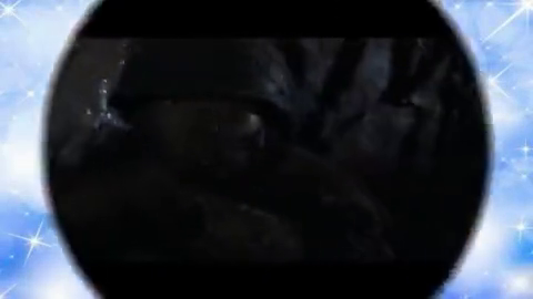 攻上南天门的坑道战,疯狂的中国军队,美国联络官惊讶的吐槽不断