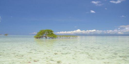 除了长滩岛,菲律宾这些新兴旅行目的地你不能错过