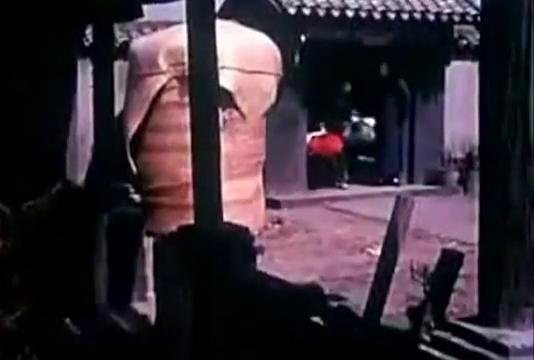 《槐树庄》郭大娘带领群众同崔治国斗争胜利完成土地改革