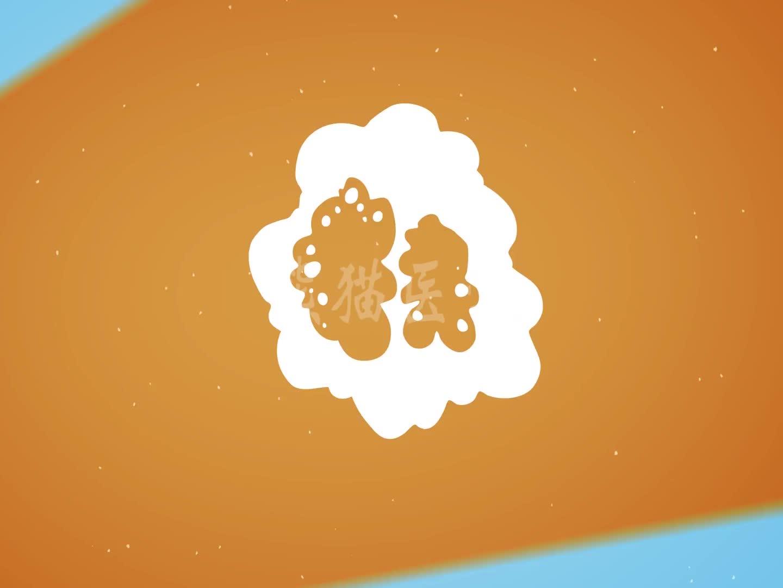 《三十而已》:许幻山患上脂肪肝,顾佳勒令其断食晚餐是否科学?