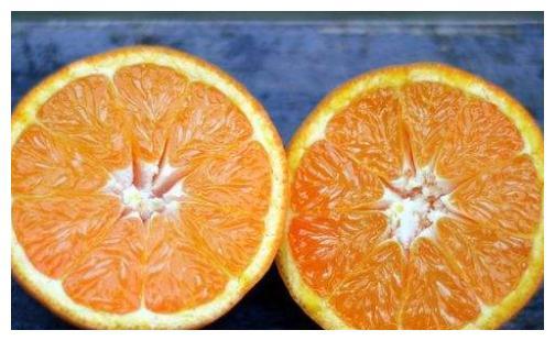 在秋天就要多吃这些水果,不仅好吃,价格也便宜,而且维C多