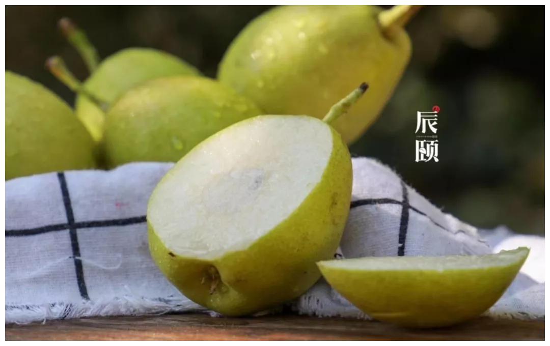 """陈毅故事:""""吐鲁番的葡萄 哈密的瓜 库尔勒的梨"""