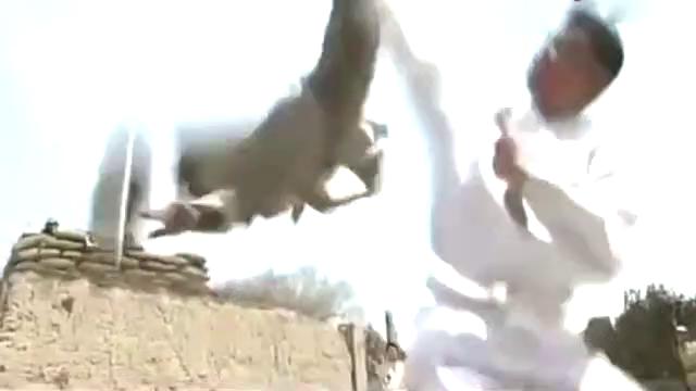 抗日奇侠鹰抓功大展神威,瞬间击毙鬼子武士,太帅了