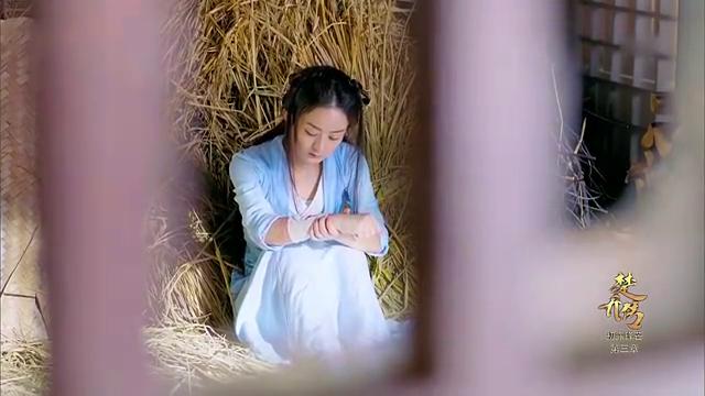 楚乔传:赵丽颖的命是临惜哥哥用命换来的,颖宝放开心胸要好好活