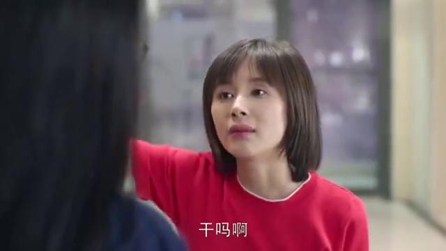 欢乐颂:安迪女王范气场霸道,一口流利的英语,直接说懵曲筱绡