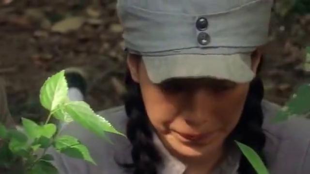 这部舒淇主演的战争大片,热带丛林中激战日寇,堪称被埋没的经典