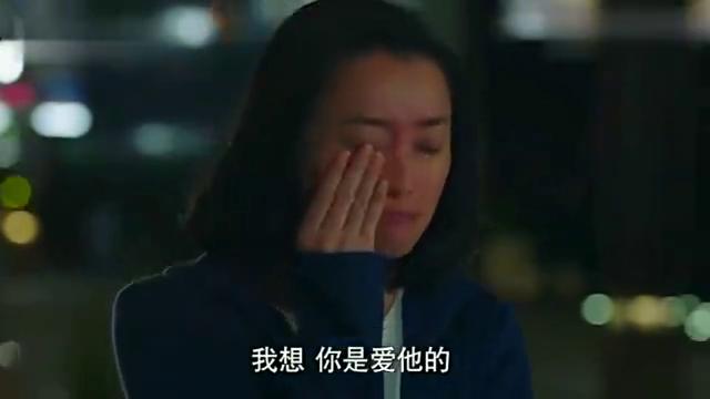 前半生:雷佳音深夜回家在车上痛哭,终于知道凌玲真面目了