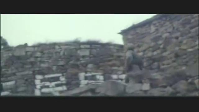 鬼子突然进村,战士为掩护女子,独自一人对抗敌人