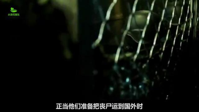 一部丧尸电影:小伙制造出丧尸,不小心把丧尸放了出去,引发灾难