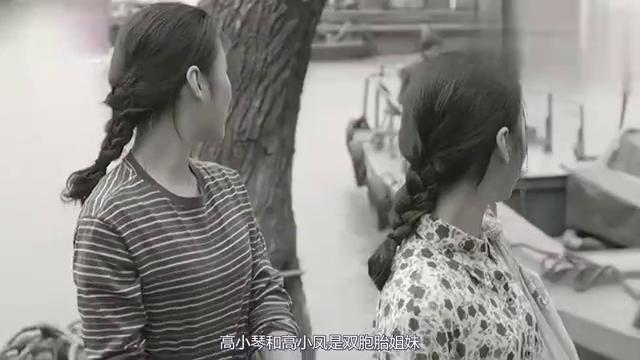 人民的名义:高小凤和高小琴是双胞胎,为何高育良偏爱姐姐高小凤