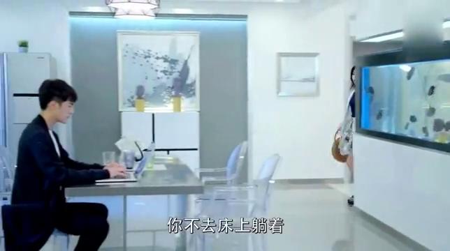 《狐狸的夏天》谭松韵给傲娇总裁吃止泻药,一句话戳中了笑点!
