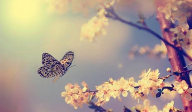 """""""风流""""才子杜牧写首诗送给女神,仅28个字,夸得她天上有地下无"""