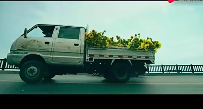 夏洛用法拉利换一货车向日葵,谁注意到对方的话了