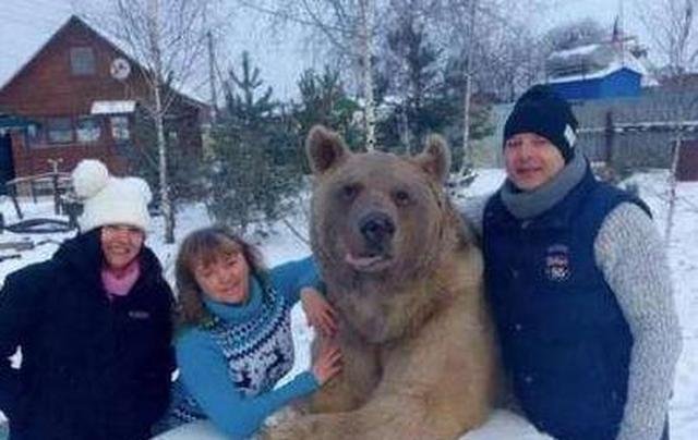 """为何俄罗斯人""""壮如熊""""?看到他们的伙食,网友:瞬间明白了"""