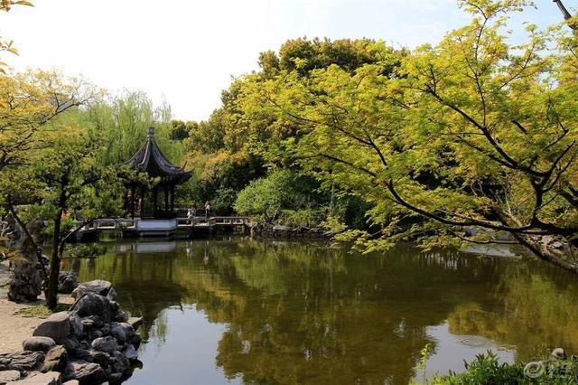 """上海又一园林走红,人称另一个""""拙政园"""",风景优美不输苏州"""