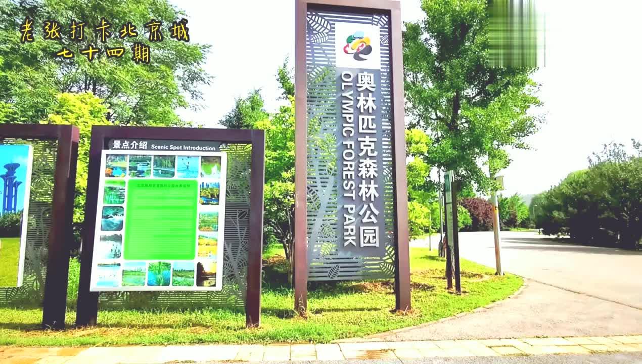 北京奥森公园里面暗藏一条水龙,与什刹海遥相呼应,龙身环抱鸟巢