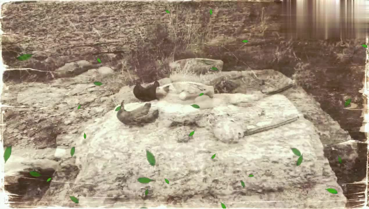 济南东城围子山上有一座狐仙庙,看来早些年,山中狐狸少不了