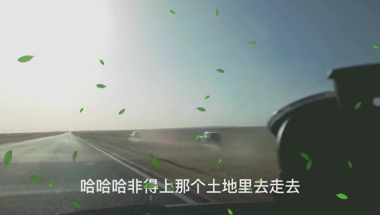 网红打卡地型公路,过往车辆速度很快,游客冒着生命危险拍照