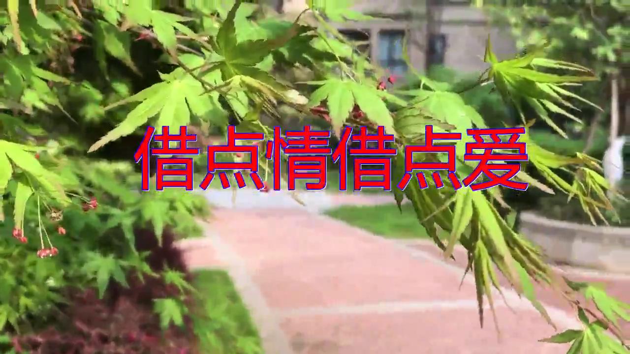 DJ何鹏、曹越的一首《借点情借点爱》,很有气质,静静聆听