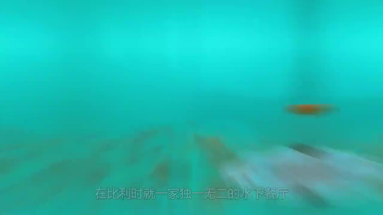 全球最牛水下餐厅,必须潜水才能到达,吃一顿饭要5千块钱