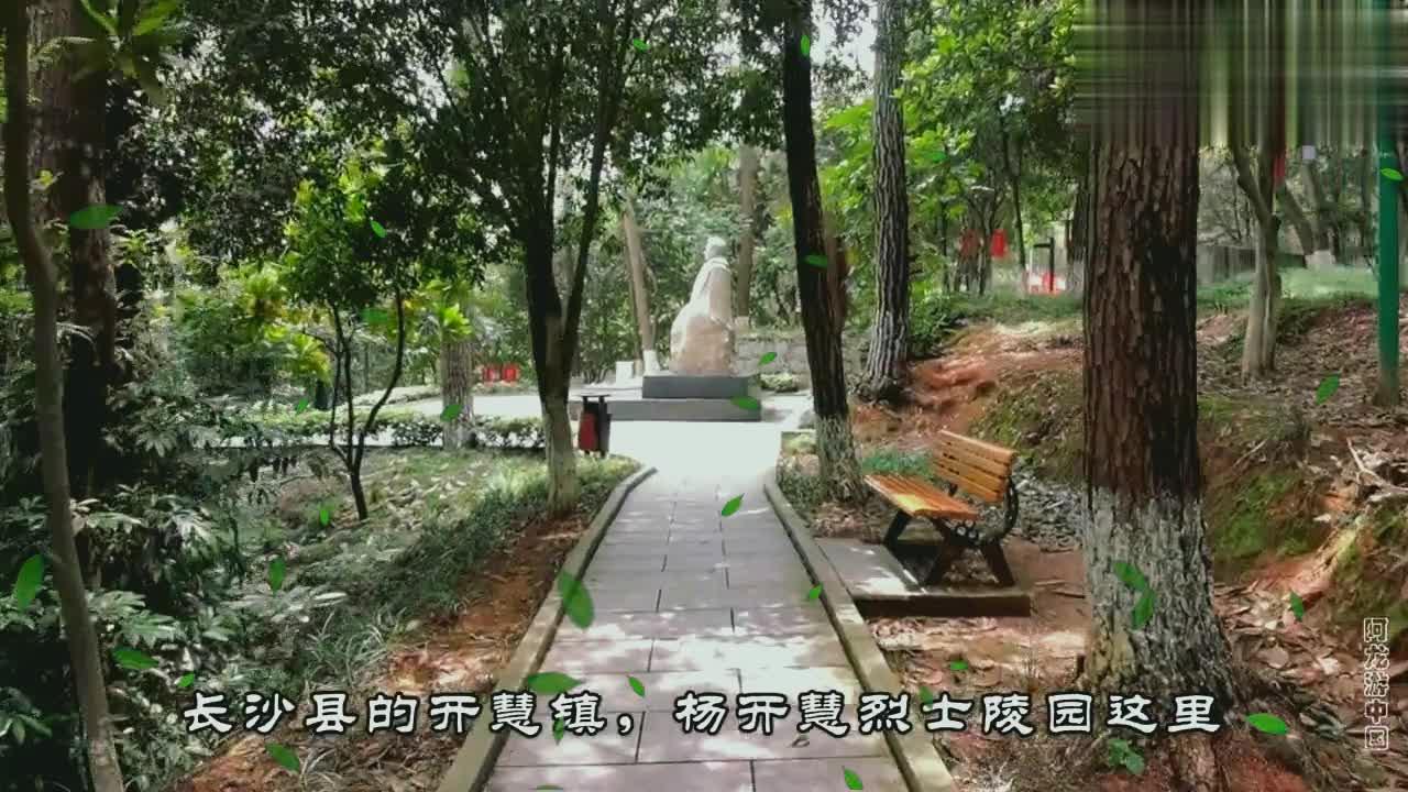 湖南长沙,拜谒岸英烈士衣冠冢,在上海度过了苦难的童年