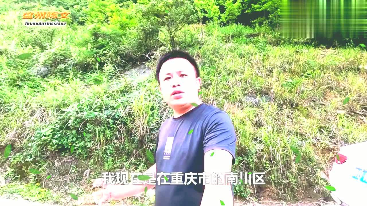 重庆南川区,悬崖中间被掏空,还砌了几十米围墙,难道有人住过吗