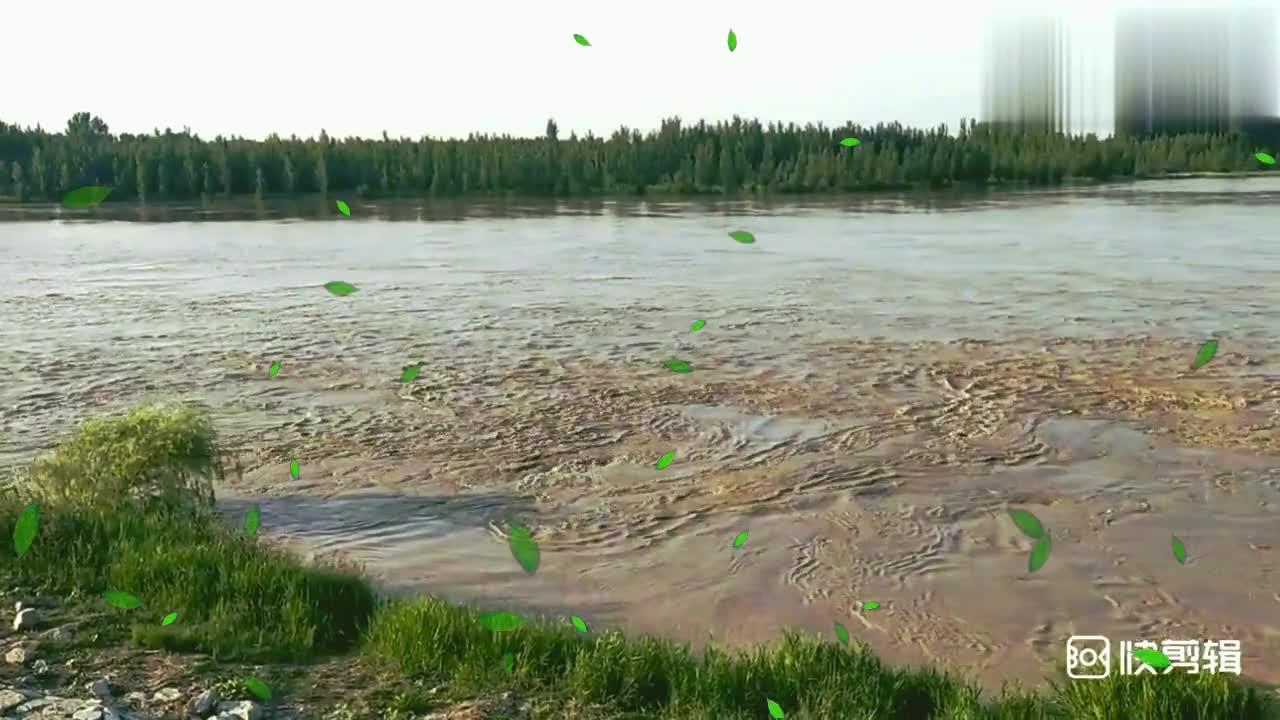 汛期来临,洪峰水头过境济南黄河段,人们都来欣赏这壮观景象