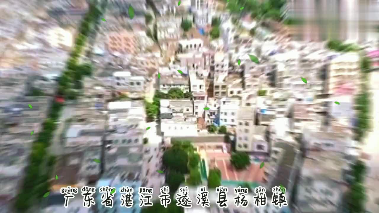 这是我的家乡,广东省湛江市遂溪县杨柑镇,你的家乡是哪里的呢