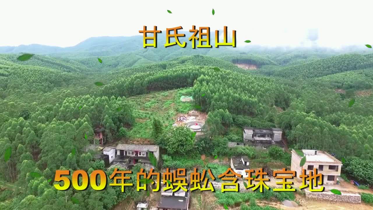 广西横县云表大山里的甘氏祖山,子孙后代人才辈出,气势宏伟壮观