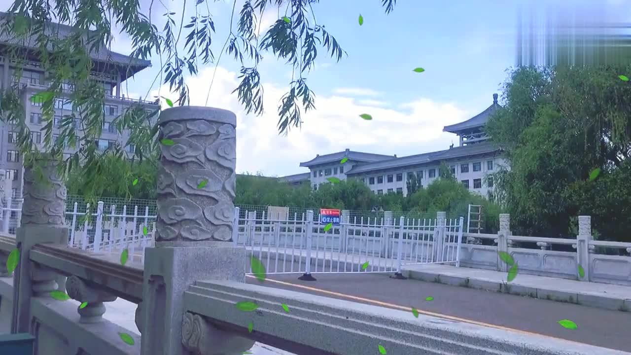 哈尔滨阴云密布下的小桥流水,为啥一般人都不会来这看他俩就懂