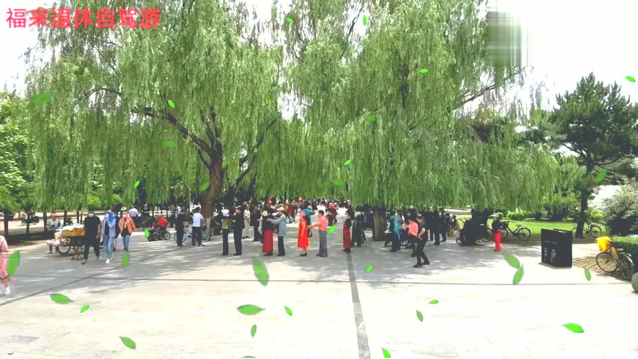 沈阳这个公园里有几百人在跳交谊舞,都是中老年人,丰富多彩。