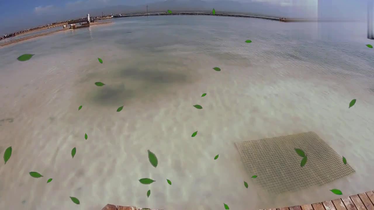 青海省茶卡盐湖景区,居然有很多游客赤脚进盐湖,这可是食用盐!