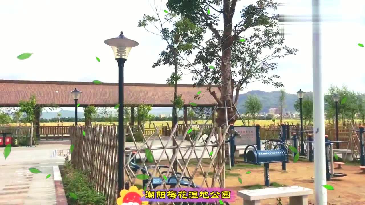 汕头市潮阳区梅花湿地公园,真是一个好去处,来欣赏这里的风景吧