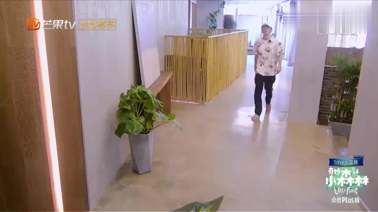 小森林:张新成做早餐,连小米都找不到,幸亏吴奇隆及时救场!