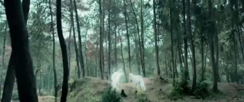 农夫猎杀了一只白狐,不料另一只白狐修炼后回来复仇!