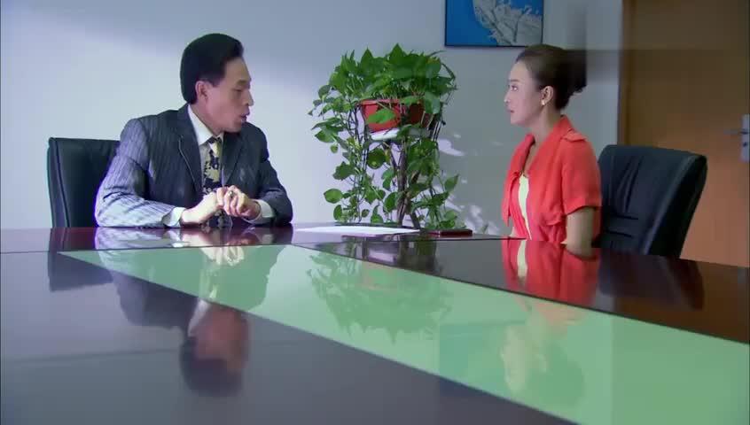 非缘勿扰:老板借谈工作想占灰姑娘便宜,刘琳奋起反击,太解气了
