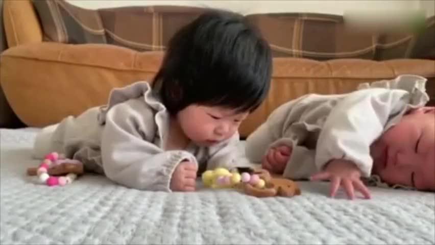 双胞胎宝宝抢玩具,这是我见过的最软萌的版本,太可爱了!