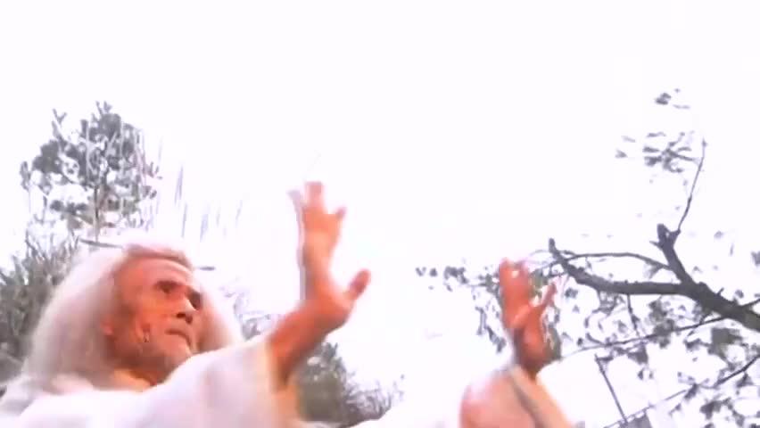 武侠剧:苏星河不敌丁春秋,虚竹以七十年功力相助,胜负立分