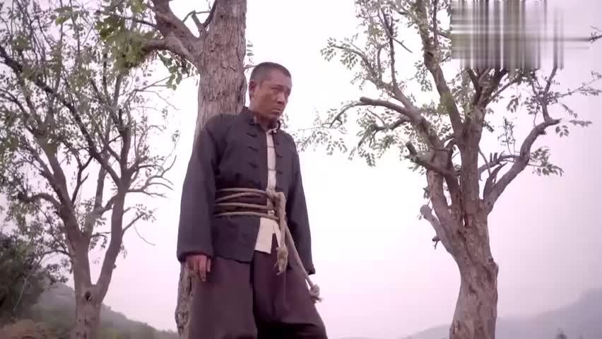 韩美丽要砍祖坟上的枣树,万万没想到农村老汉竟想出这招,绝了!
