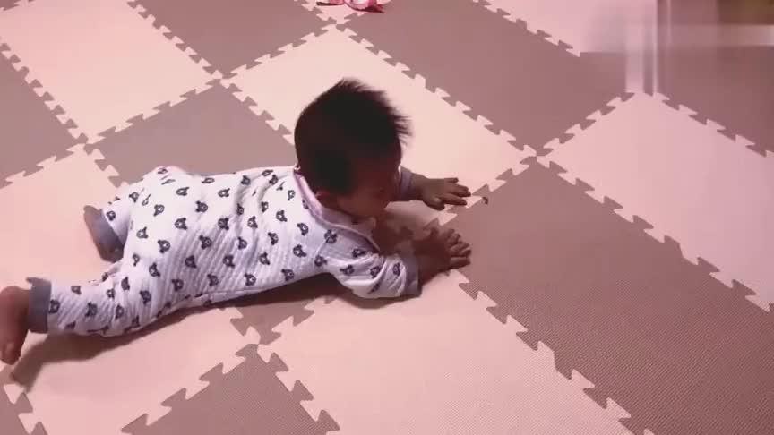 刚学会爬行的宝宝兴致很好,一会移一点一会移一点,小模样可爱啊