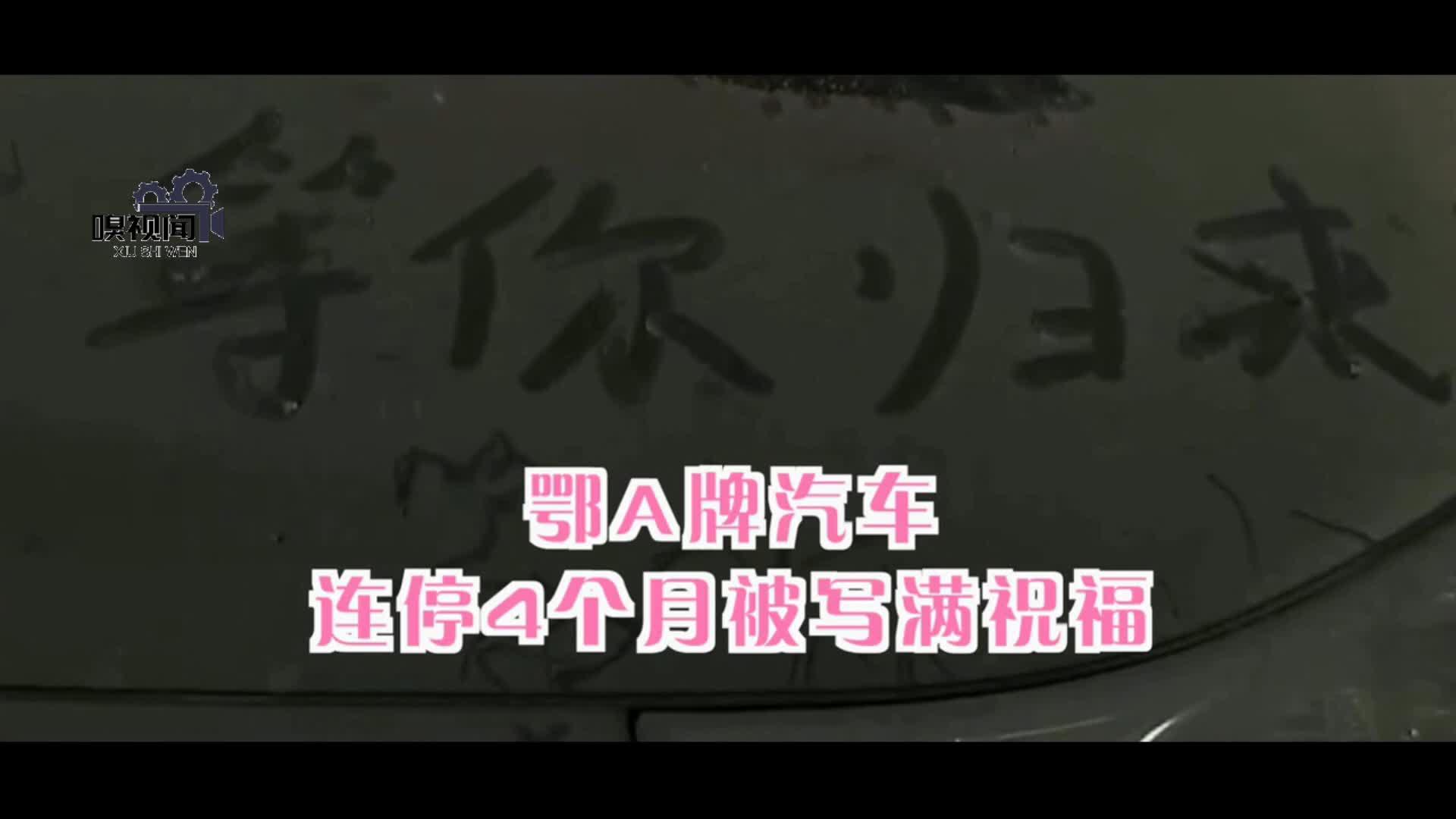 """河南郑州:3040元停车费免了!鄂A牌车连停4个月""""回家""""了"""