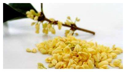 桂花籽也能酿酒~而且真的是香!对身体健康也有很大的辅助作用呢