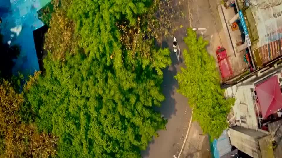 从你的全世界路过:陈末真是一个真正的男子汉,拿着牌子游街去了
