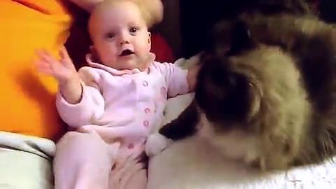 宝宝摸着小猫咪的毛好开心,越摸越笑,真萌啊