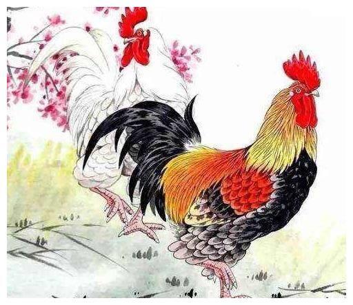 12生肖2021年春节运势哪个属相运势最好,前五位最旺