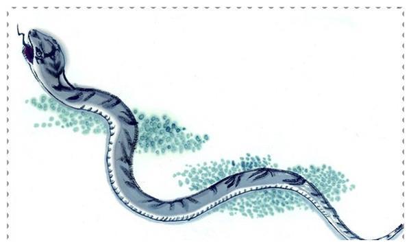 生肖蛇 2020年12月综合运势分析