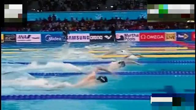 游泳世锦赛孙杨秒杀霍顿勇夺400米自由泳冠军,朴泰桓第4