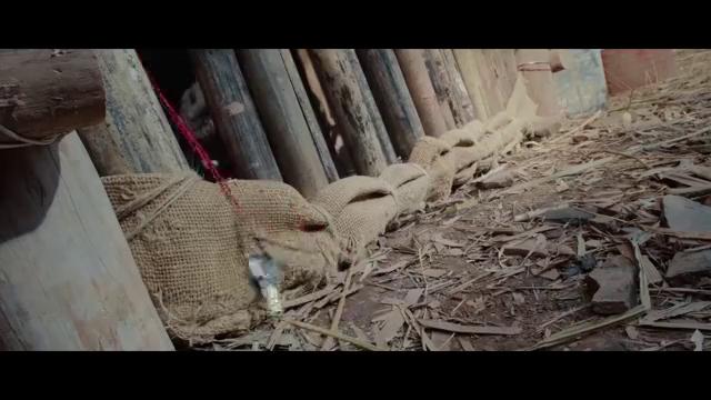 影视:武警部队与歹徒交火,男子为保护队友,以身殉国!