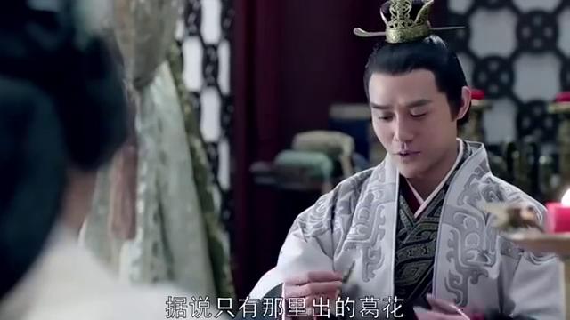 琅琊榜:靖王无意间提到梅长苏书信,静妃顿感兴趣,要拿来看看